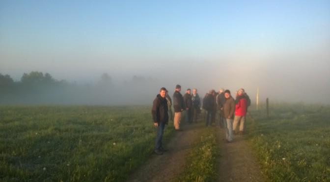 Traditionelle Fußwallfahrt nach Waldenburg